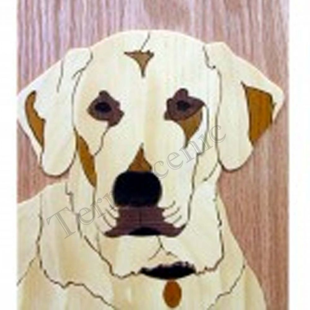 Marquetry Kit Set Craft Golden Retriever Dog Wood